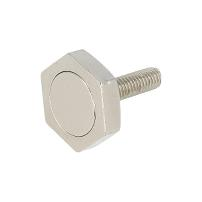 Magnet Screw F/Sauna, M6x28mm, W/22mm Hex Head, NPL